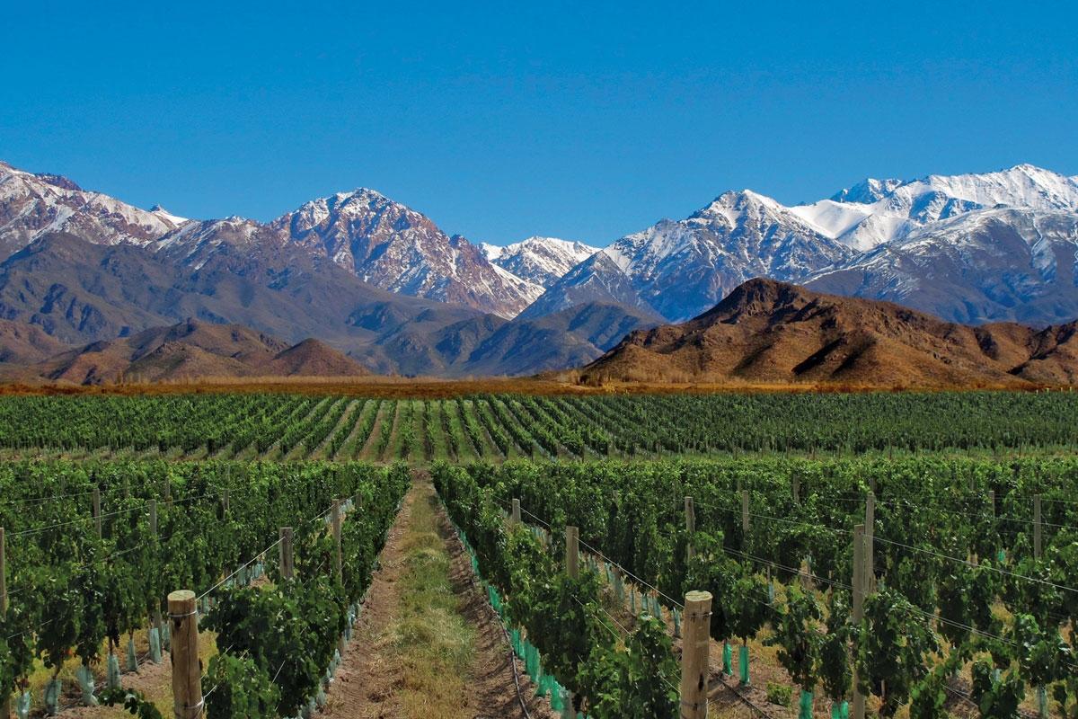 Conocé Mendoza, una provincia llena de atractivos.