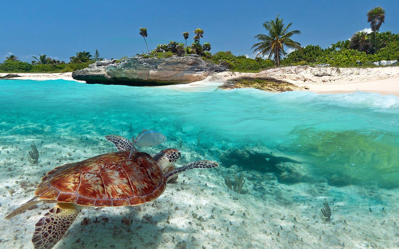 Un paraíso en la denominada Riviera Maya