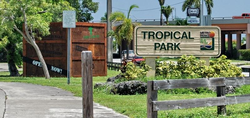 Destino: Paraíso tropical