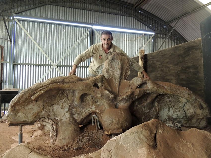 Proyecto Dino te invita al maravilloso mundo de los fósiles