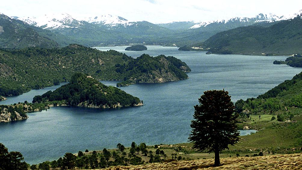La Senda del Pehuén ofrece su impresionante paisaje para percibir a los visitantes